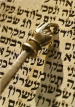Torah and yad vertical